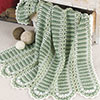 Learn It! Do It! -- Mile-a-Minute Verdant Afghan